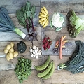 Organic Seasonal Produce Half Share