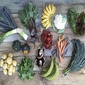 Organic Seasonal Produce Full Share